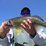 Trophy Walleye catch at Eagle Lake Sportsmens Lodge